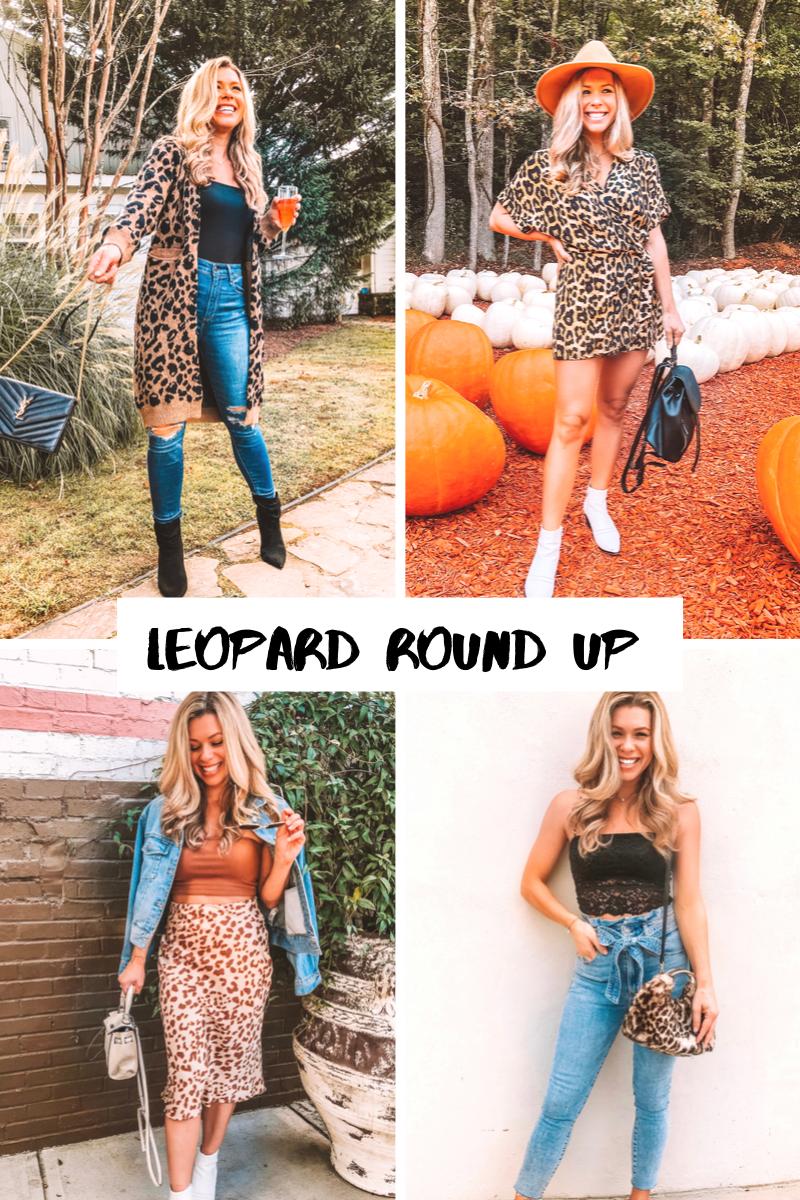 leopard-round-up.jpg