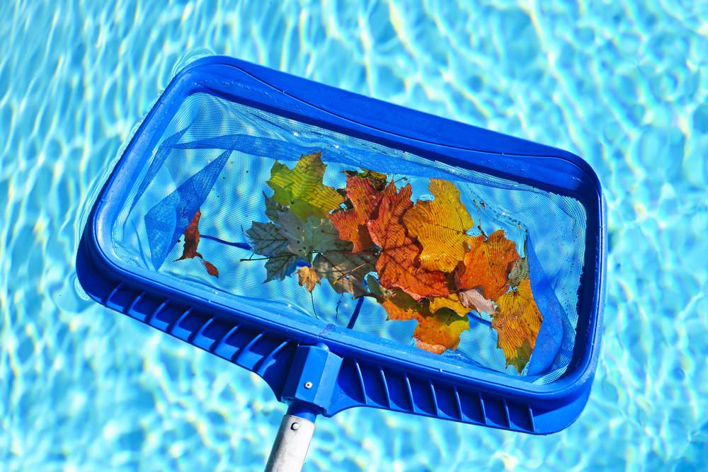 Pool Cleaning Austin - Pristine Pools