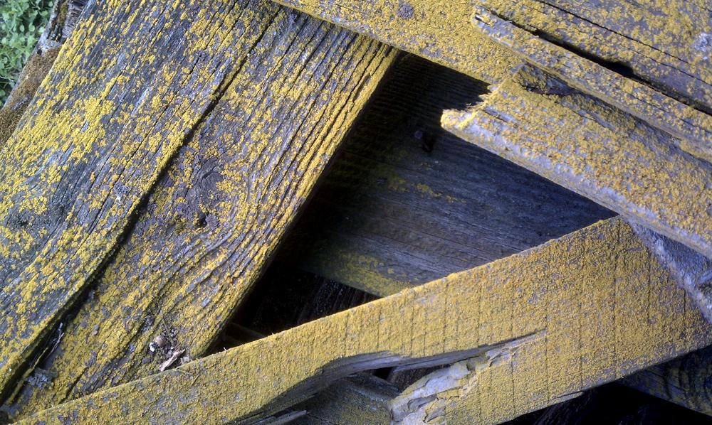 MFEO-Reclaimed-Barn-Wood-1.jpg