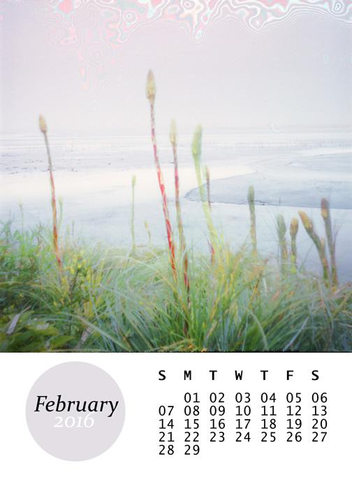 February,from my 2016 mini calendar