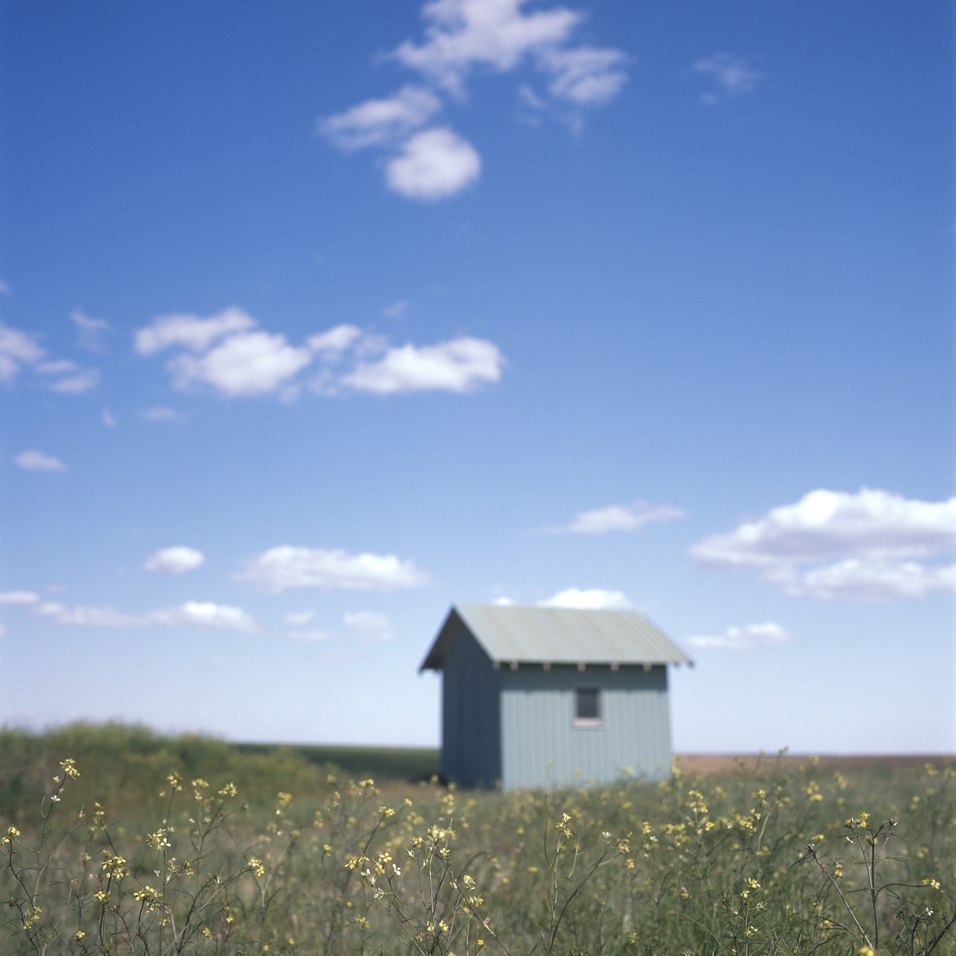 Prairie Shed, 2008