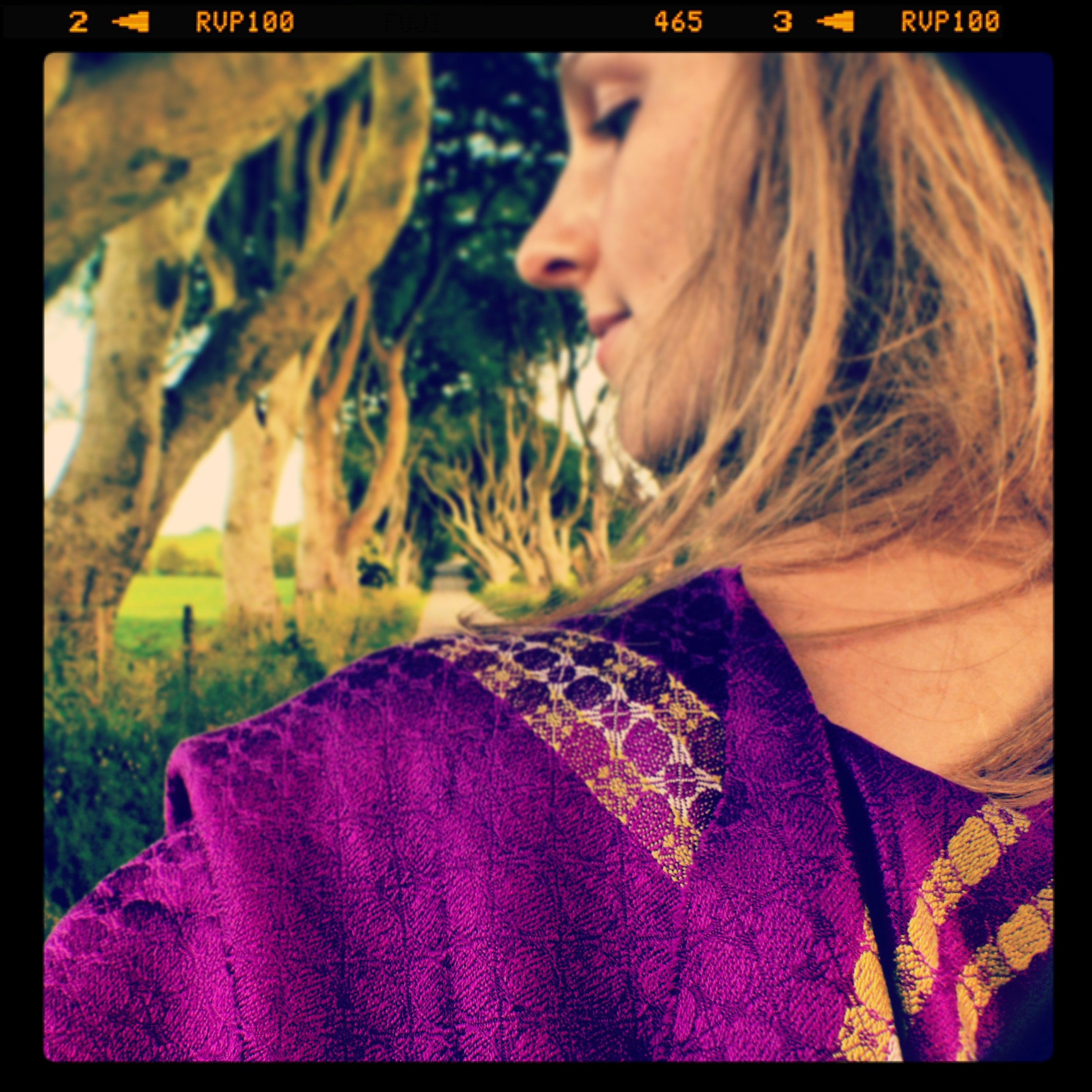 petal-and-stem-magenta-silk-scarf.jpg