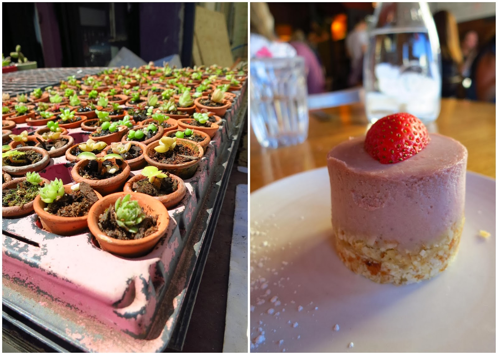 Another raw treat (pictured right) is the strawberry basil cake (Vegie Bar)