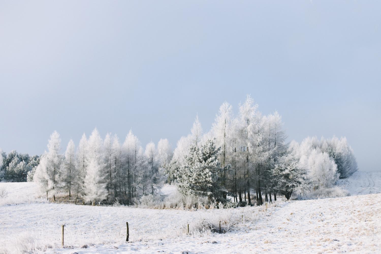 zima w kawkowie