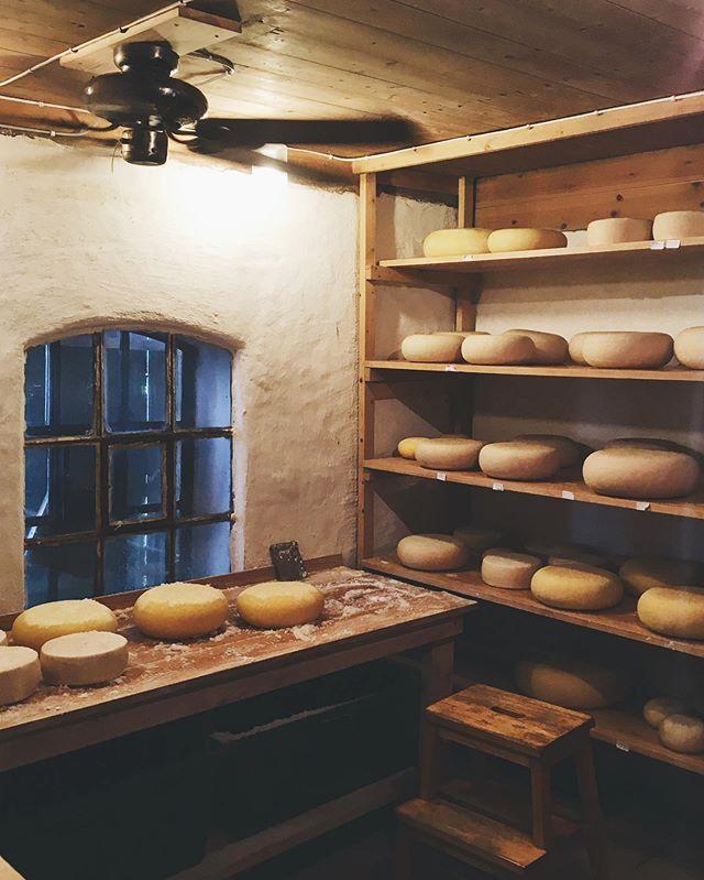 Stanowiska pracy 🐐✨🐄 #cheesehouse #czyli #domsera #norskost #geitost #gårdsost #recznierobione #pycha #ser