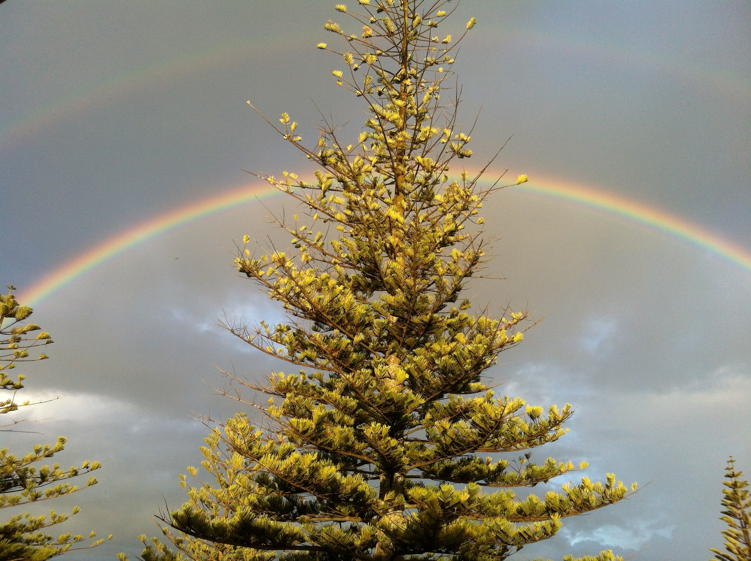 The perfect end to our first day in Napier. DOUBLE RAINBOW from my apartment balcony!!