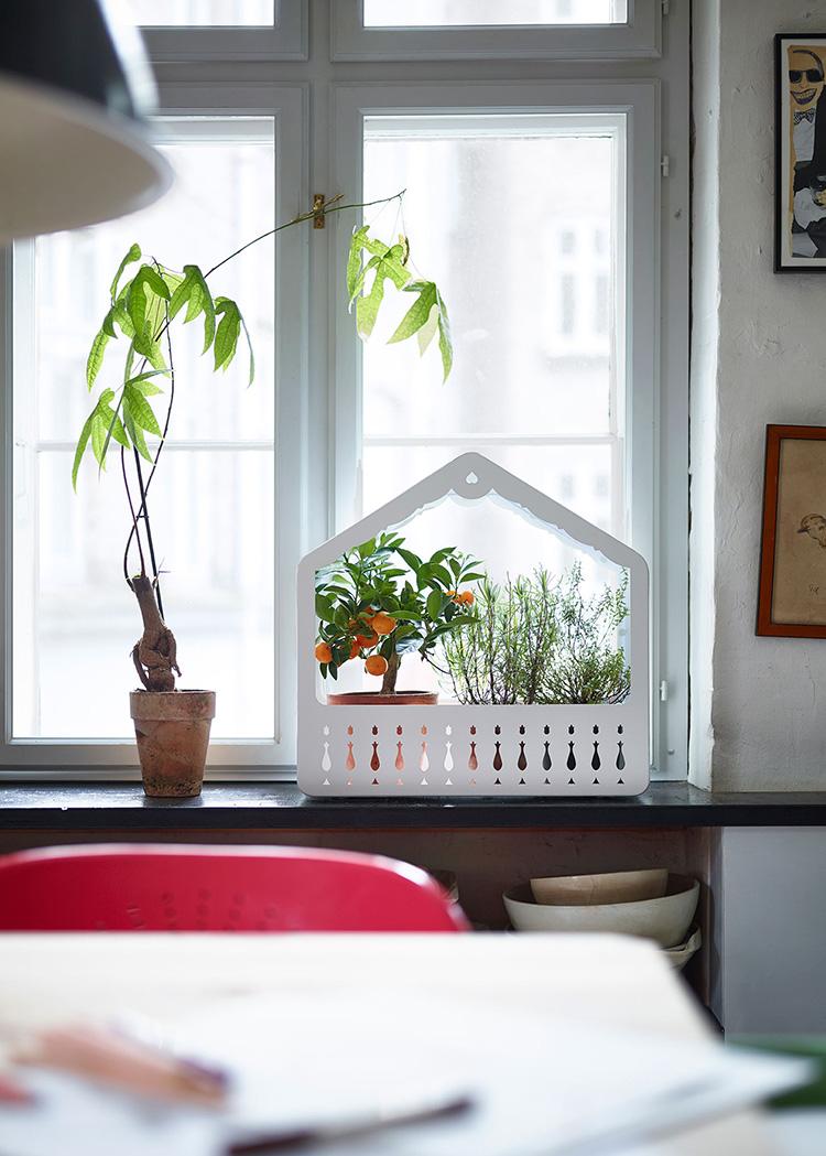 IKEA PS 2014 greenhouse $29.99