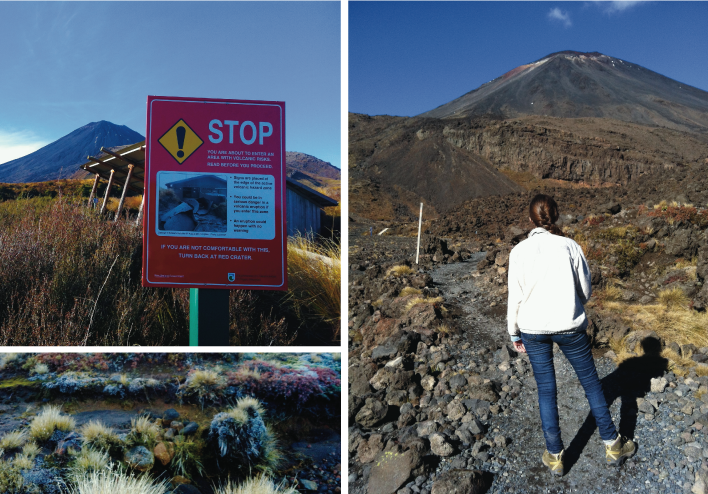 STOP! You are about to enter an area with volcanic risks. If you are not comfortable with this, turn back at the red crater.