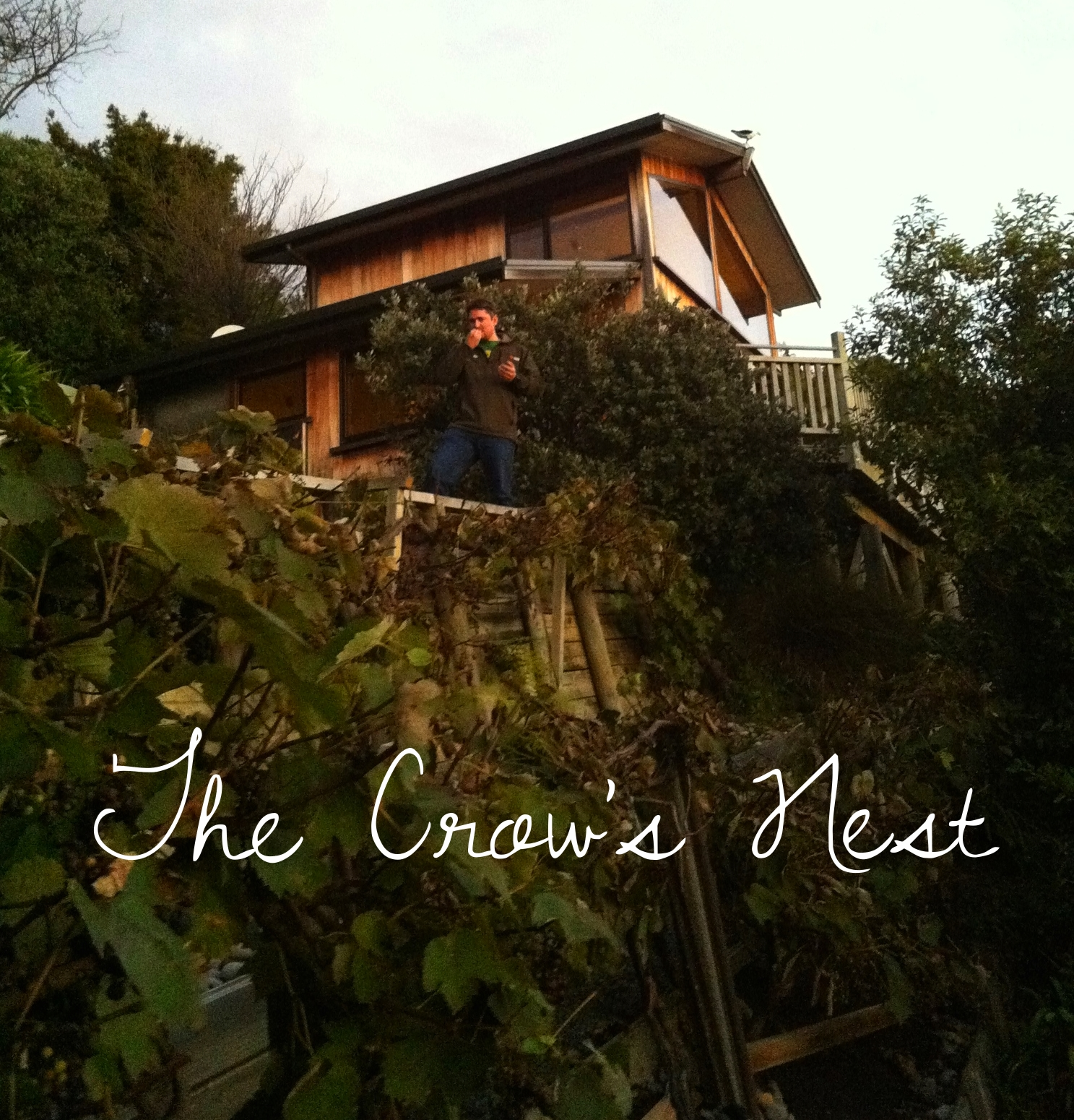 Looking up at the Crow's Nest from the garden.