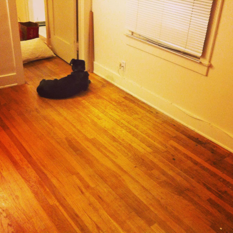 So sad seeing my empty bedroom in San Diego.