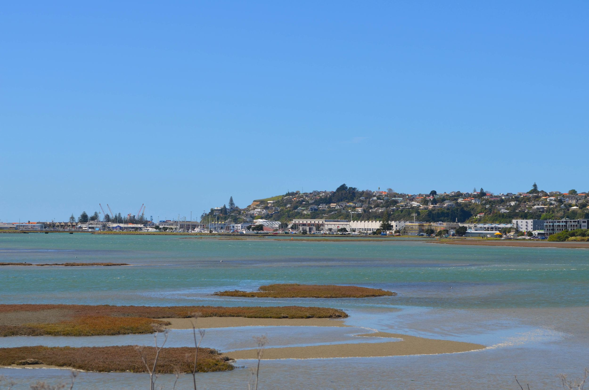 A view of Ahuriri, The Port of Napier and Bluff Hill from the estuary.