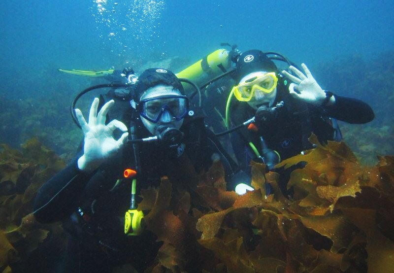 Joe and I hanging in the kelp beds. Photo courtesy of Dive!Tutukaka.