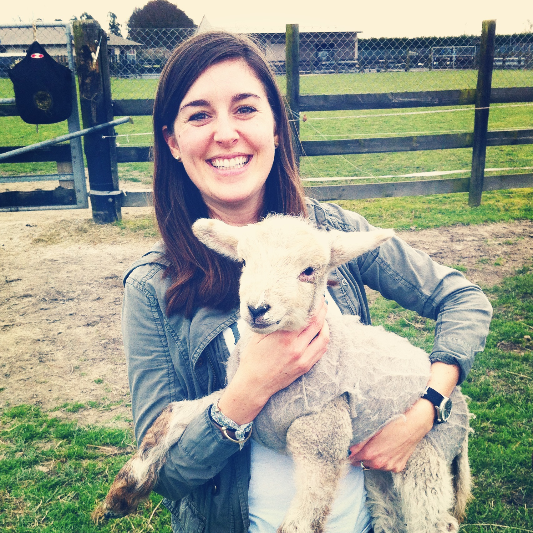 After months of 'sheep stalking' and admiring all of the spring lambs around Hawke's Bay, I finally got the opportunity to hold and feed a little lamb when my friend Charlotte invited Joe and me to see her neighbor's new lambs. They're just too cute!