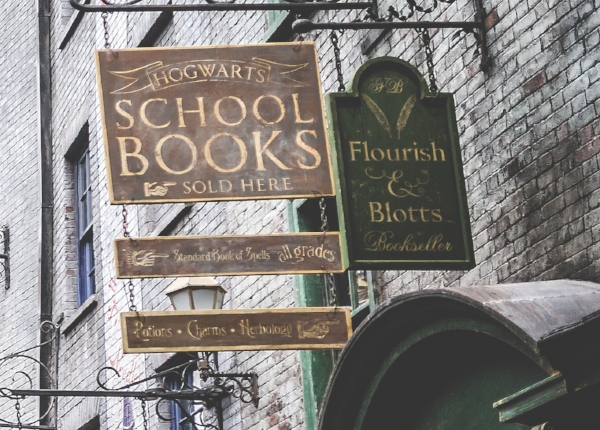 """ ...in a shop called Flourish and Blotts where the shelves were stacked to the ceiling with books as large as paving stones bound in leather; books the size of postage stamps in covers of silk; books full of peculiar symbols and a few books with nothing in them at all."""