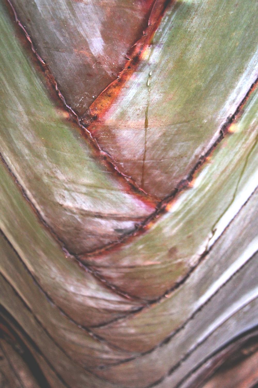 Natural herringbone