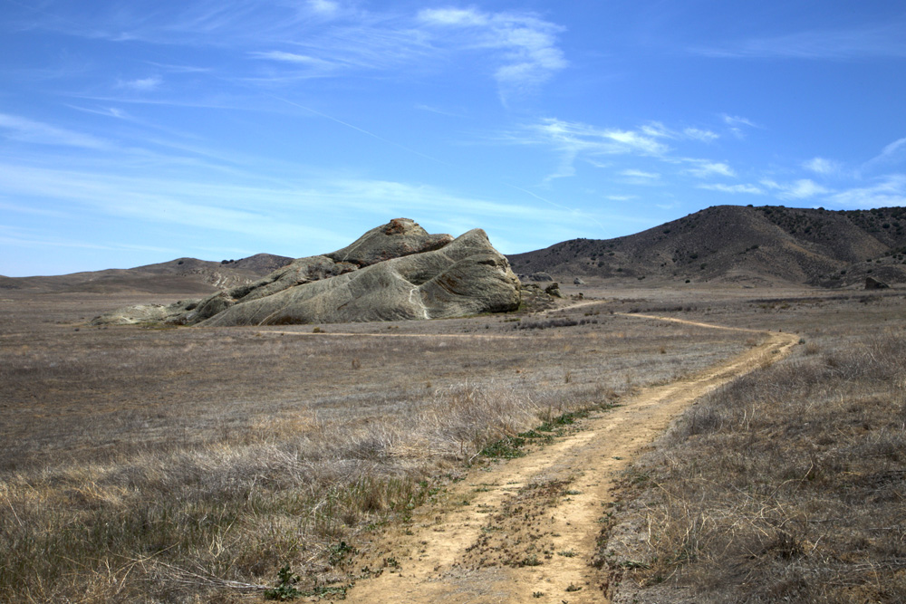 Carrizo Plains painted rock
