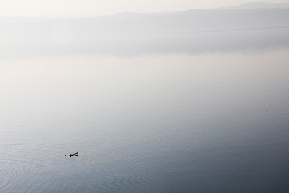 A swimmer floating in the Dead Sea