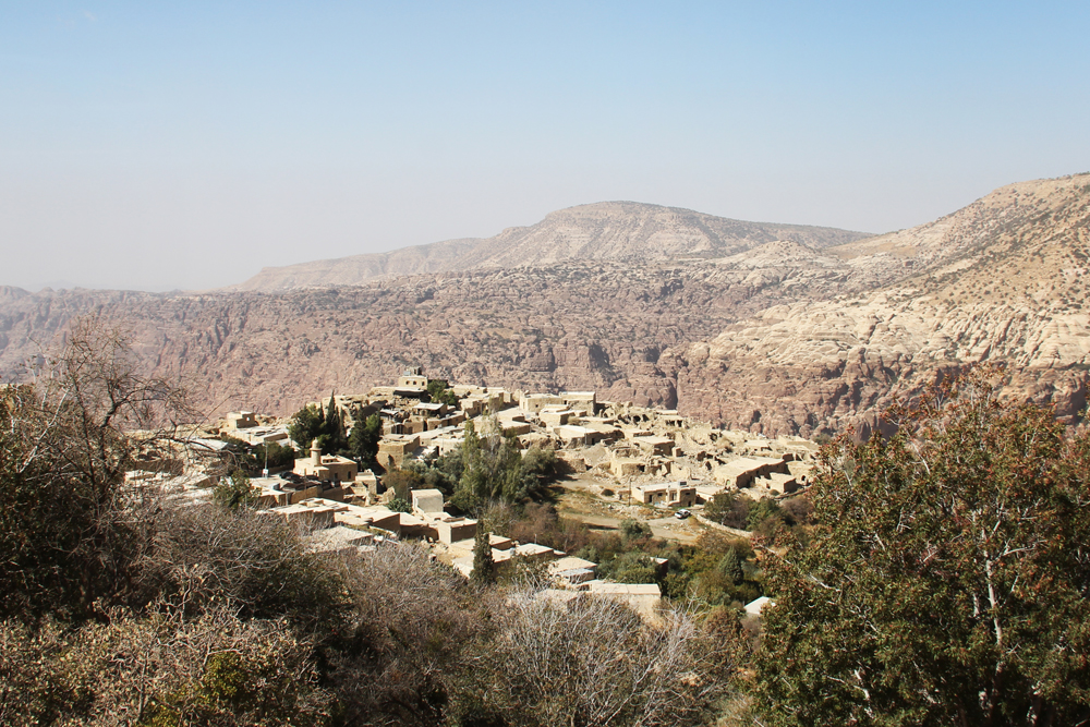 Village of Dana