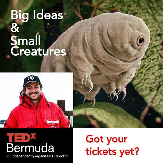 Thomas Boothby shares his work with the microscopic and unkillable tardigrades, along with the research that will change the world.  Get your tickets today!!! Link in bio.