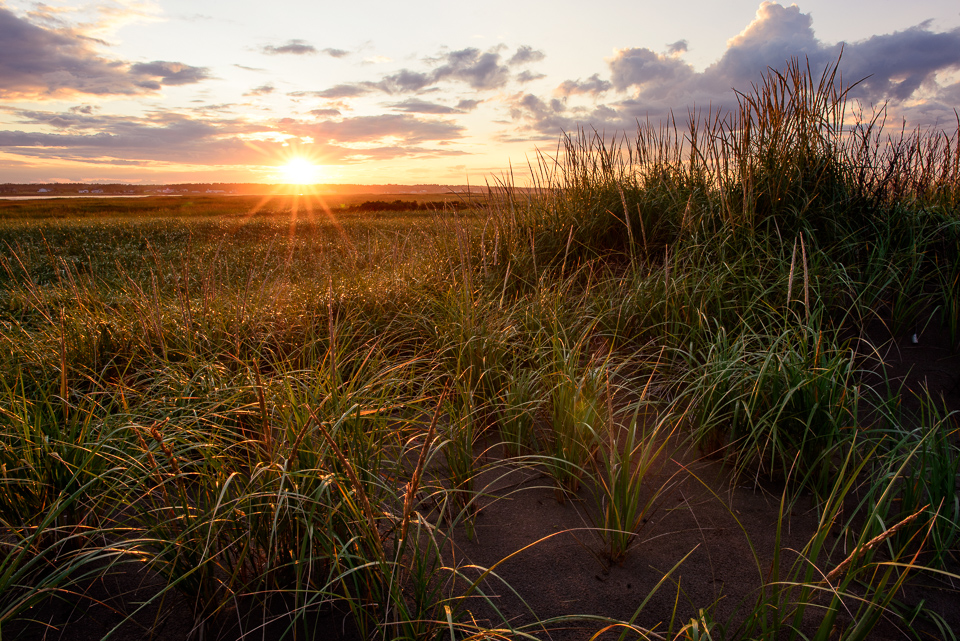 NIgel Fearon Photography | Bouctouche at Night-7.jpg