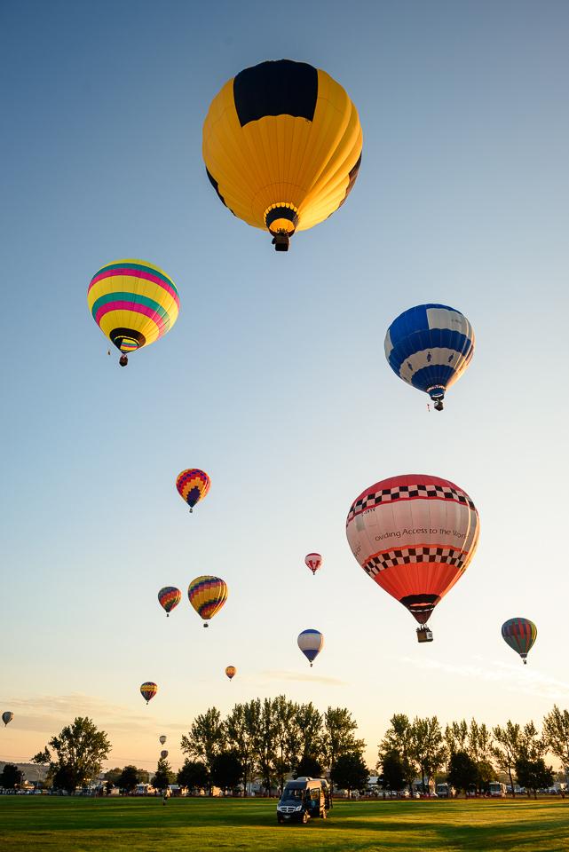Nigel Fearon Photography | Sussex Balloon Fiesta (20 of 32).jpg