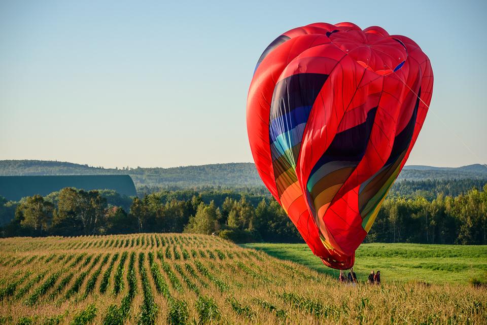 Nigel Fearon Photography | Sussex Balloon Fiesta (31 of 32).jpg