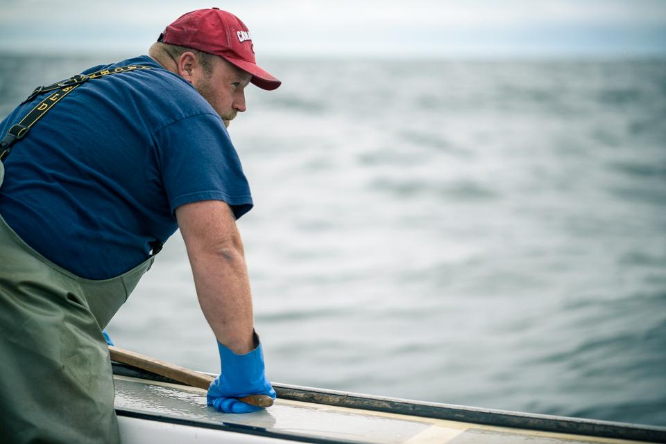 Nigel Fearon Photography | Lobster Fishing-6.jpg