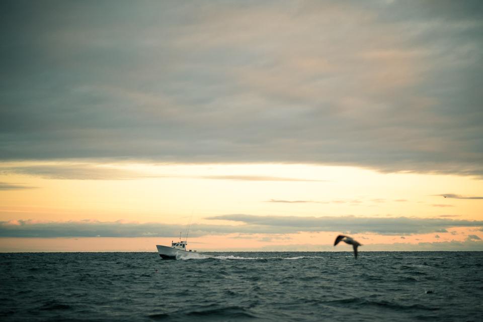 Nigel Fearon Photography | Lobster Fishing-8.jpg