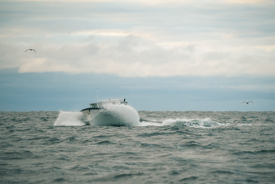 Nigel Fearon Photography | Lobster Fishing-11.jpg