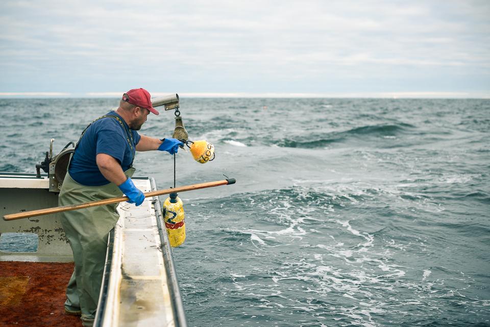 Nigel Fearon Photography | Lobster Fishing-19.jpg