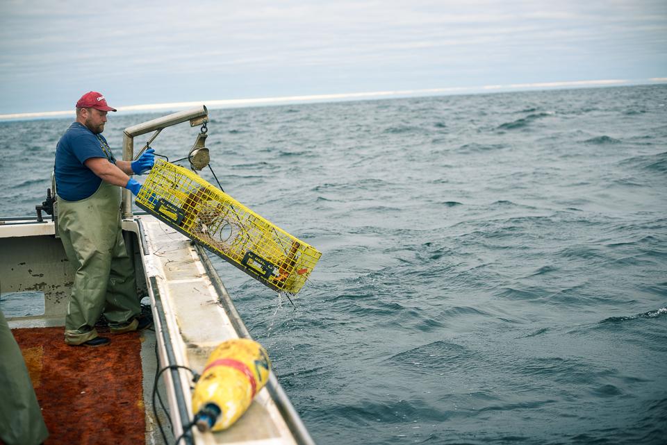 Nigel Fearon Photography | Lobster Fishing-20.jpg