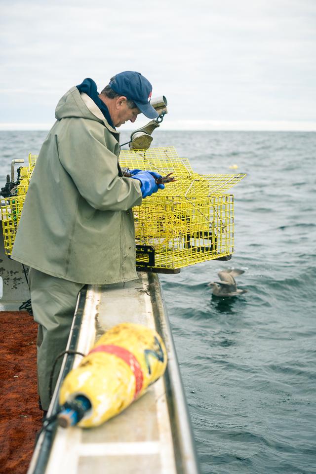 Nigel Fearon Photography | Lobster Fishing-21.jpg