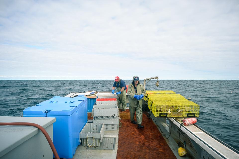 Nigel Fearon Photography | Lobster Fishing-34.jpg