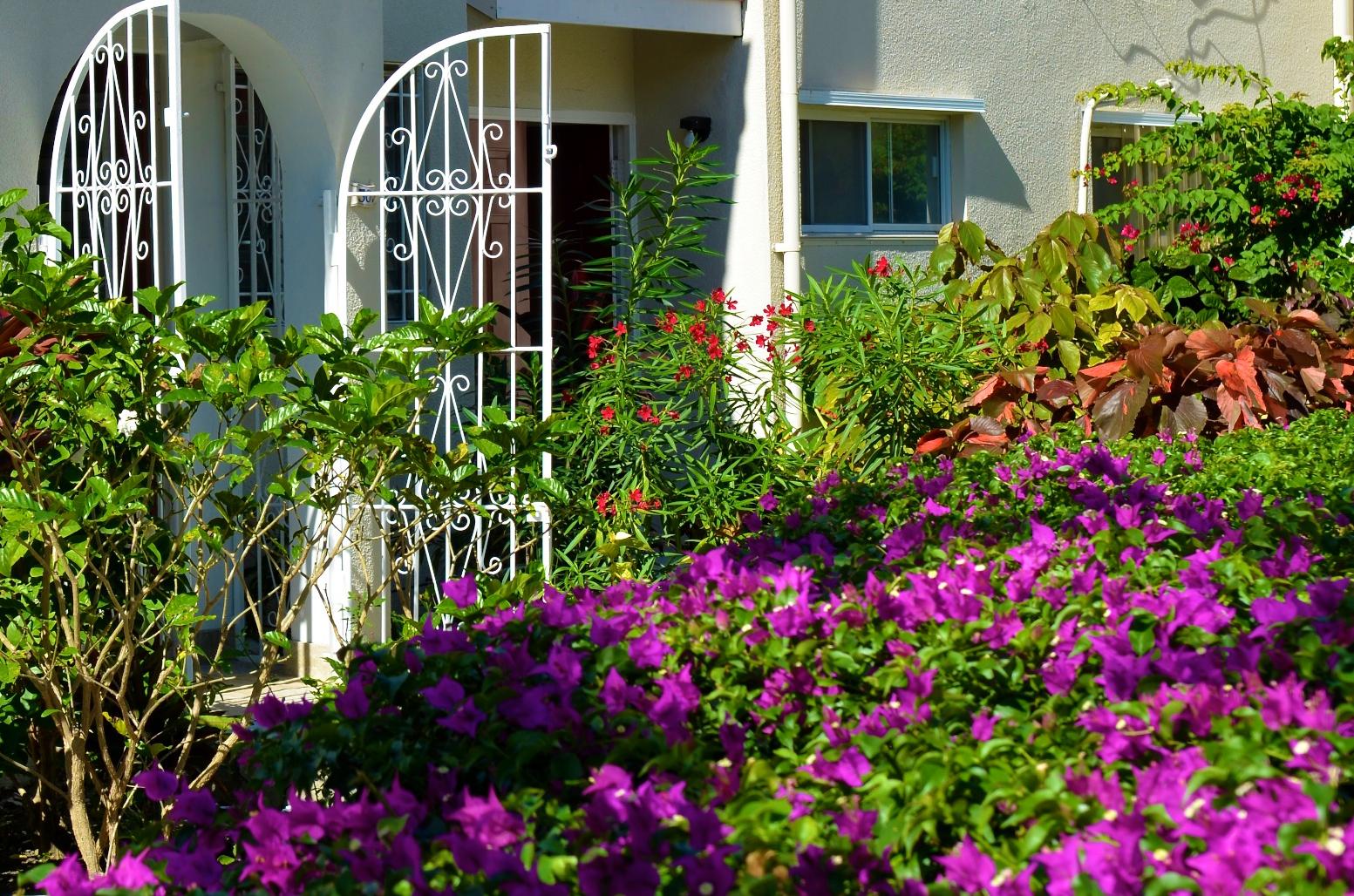 garden gate 2.jpg