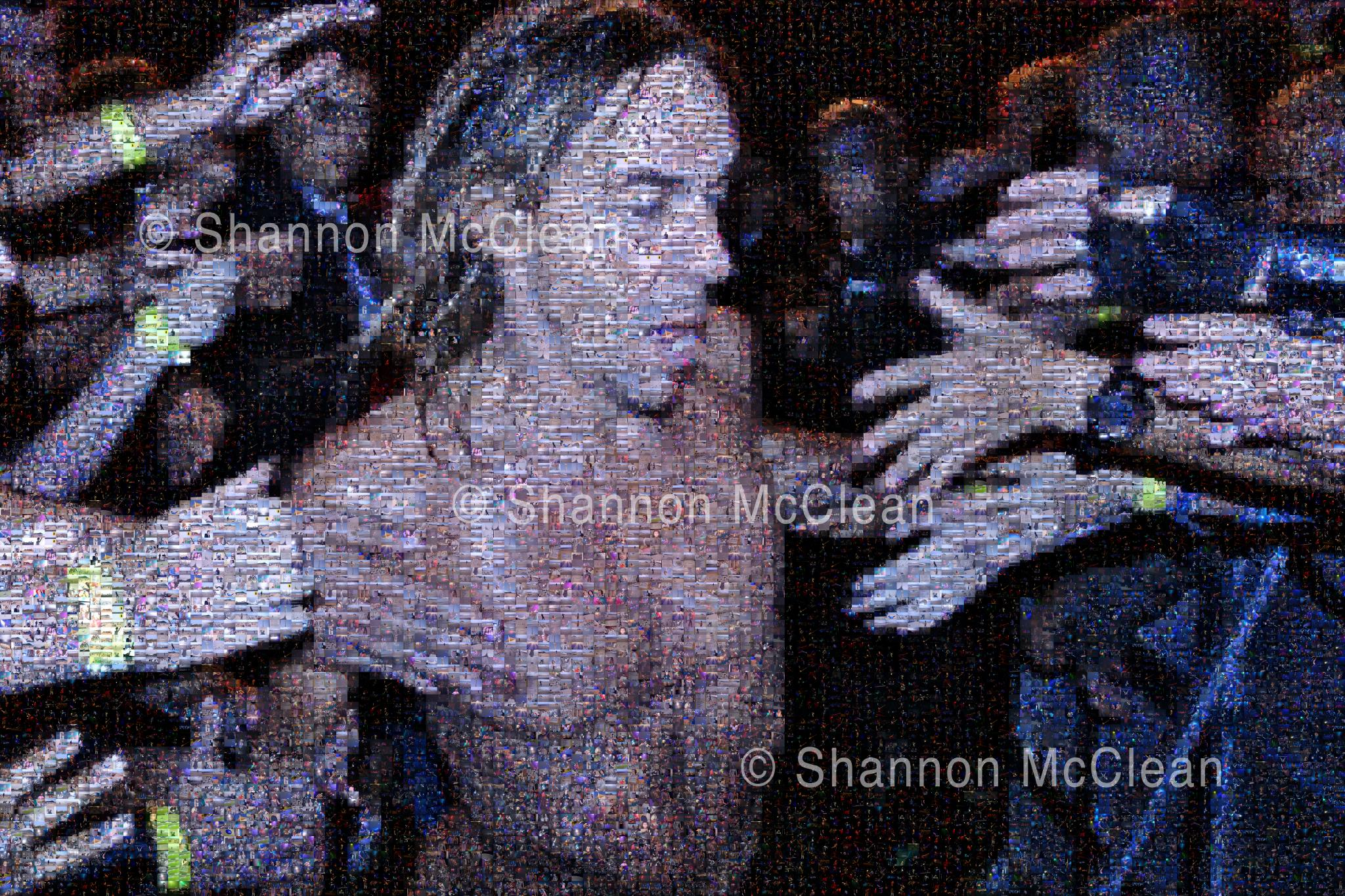 Iggy Pop Mosaic (ATP curated by Matt Groening). Made up of 8,100 images, including many contributed by fans over the ten years of the festival.