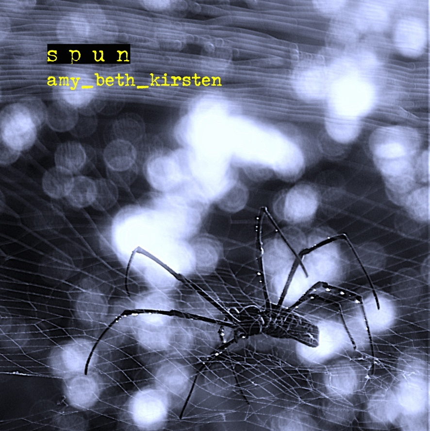spun  - coming in the fall of 2019! A CD of Amy's chamber and solo works.