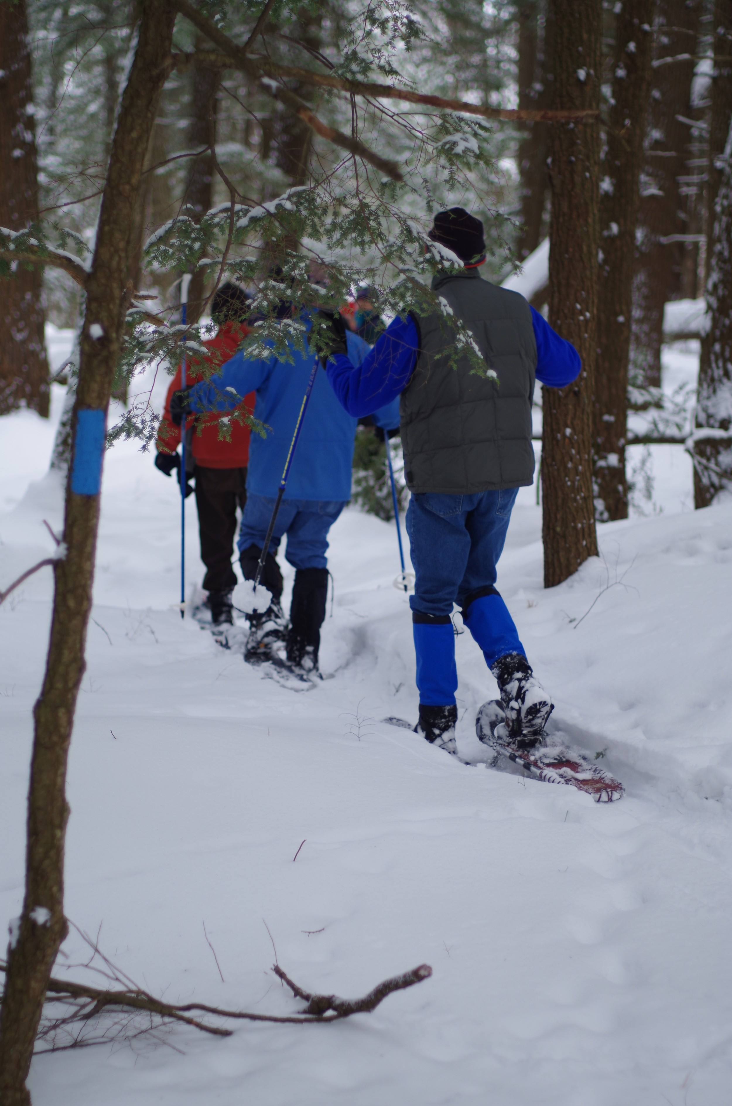 Snowshoeing the Perkins Trail in Winter 2015.  Photo: Jean- Luc Theriault