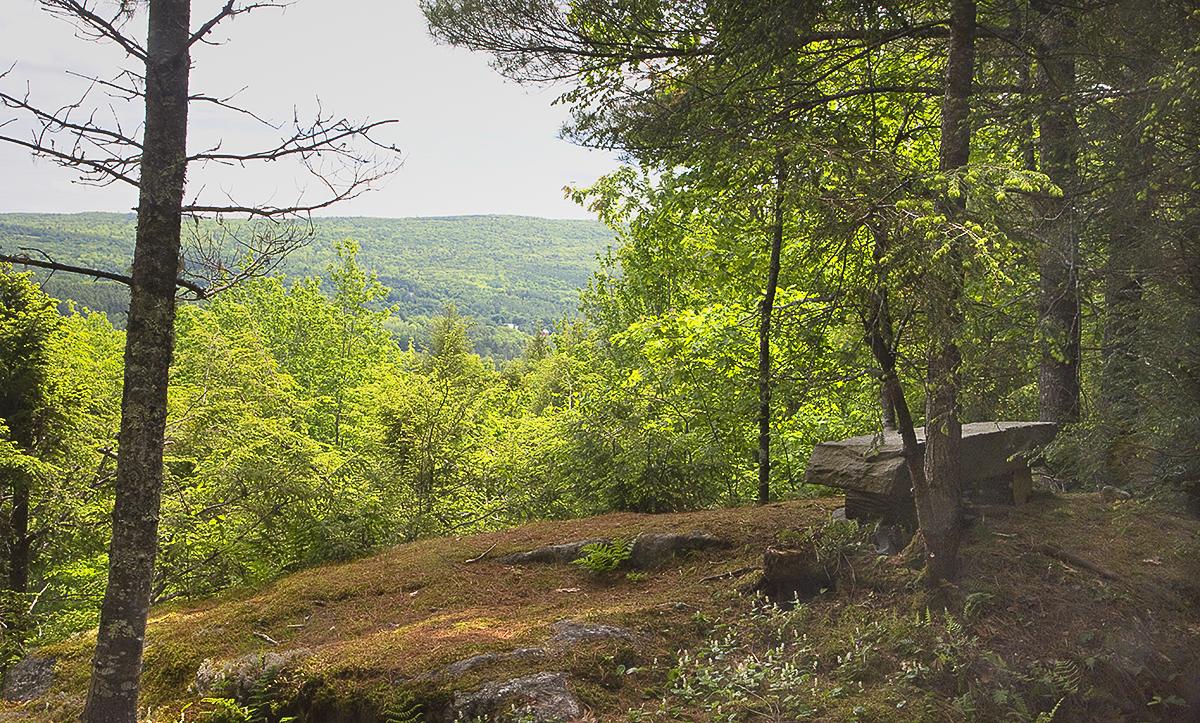 "View from ""The Pinnacle""; Jane Davis"