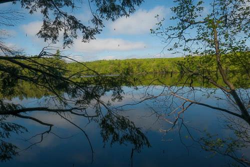 Photo: Cobbossee Stream in West Gardiner, Norm Rodrigue.