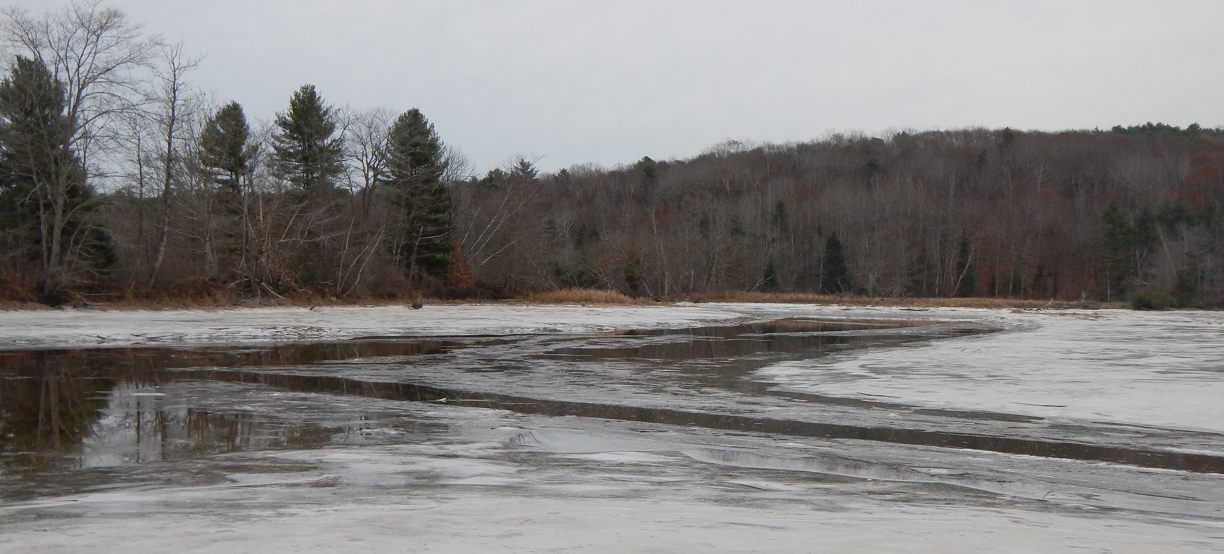 Eastern River Preserve, Photo: Theresa Kerchner