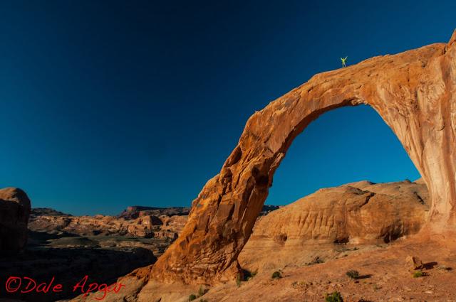 apgar_desert_2013.jpg