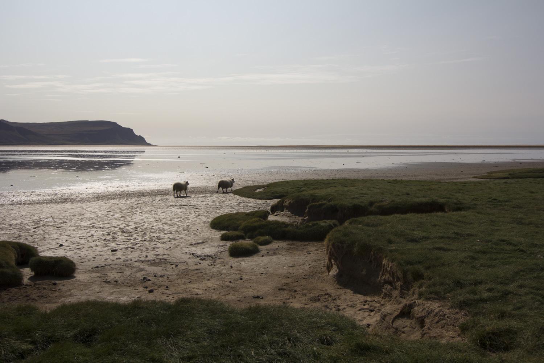 Raudasandur Beach - Red sand beach