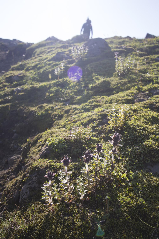 iceland blog2-10.jpg