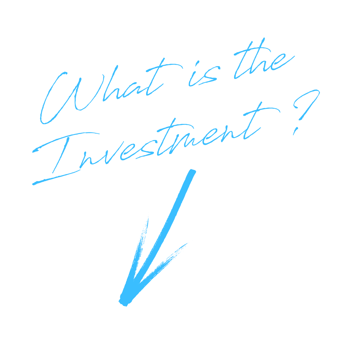 What is the Investment?.png
