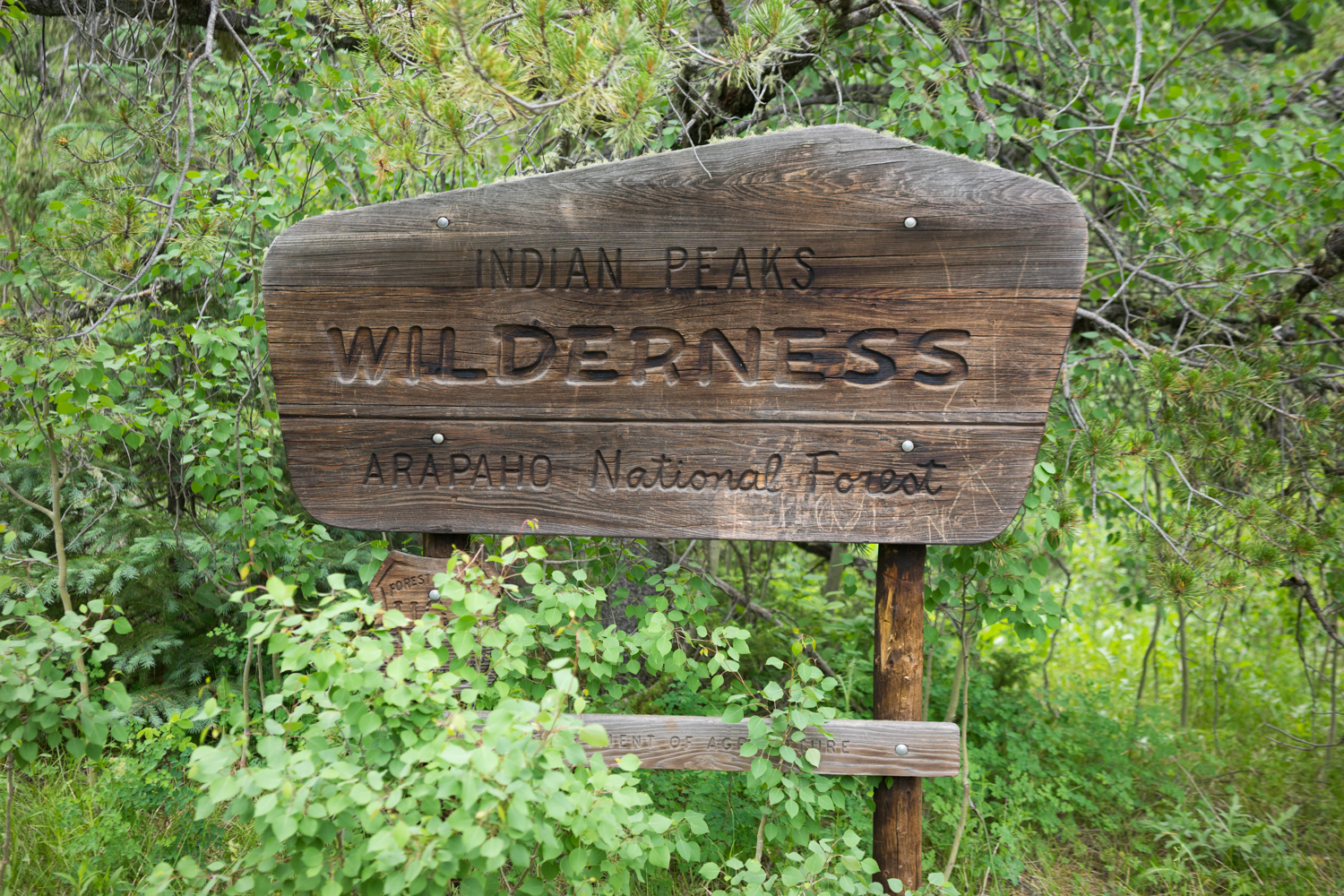 Thank you Indian Peaks Wilderness. You've left quite the impression.