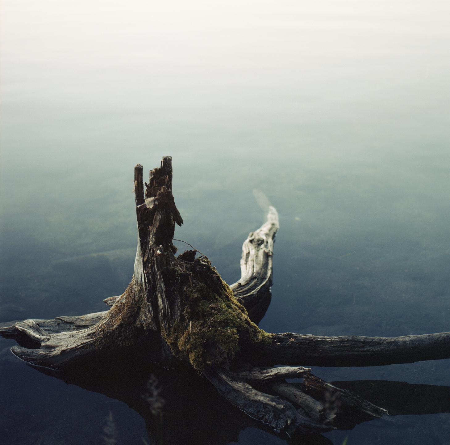 McConnel Lake#1.jpg