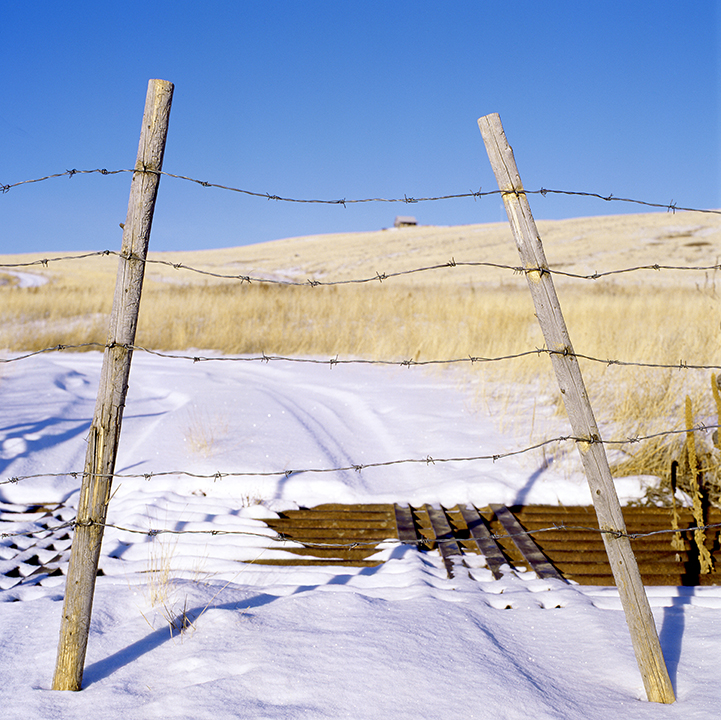 AFP2012_snowyhills002edit.jpg