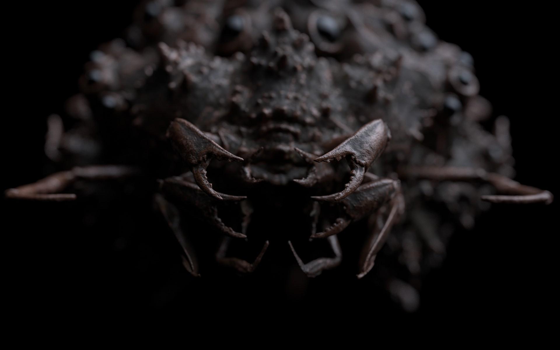Creature_Face_03.jpg