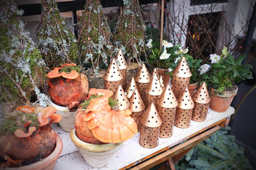 A.P Bloem, Christmas, Helaborus, Florist, Tree, Kerstboom, Arrangement, Pinecones, Amsterdam, Bloem, Bloemist, Bloemenwinkel, Candles, Tealight, Kerst