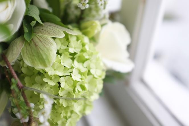 A.P Bloem Hotel Droog Droog Design Cos Press Launch Green White Fresh Flowers Bloemist Bloemen Bloemwinkel Kerkstraat Lifestyle Clothing Autumn Winter collection Snowball Hellebores